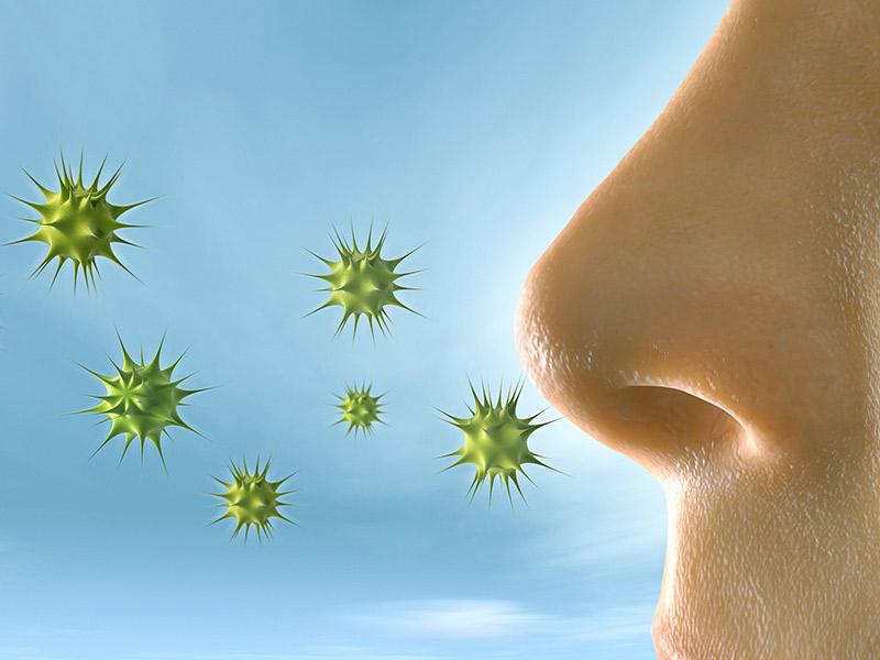 Homeopatsko lečenje alergije